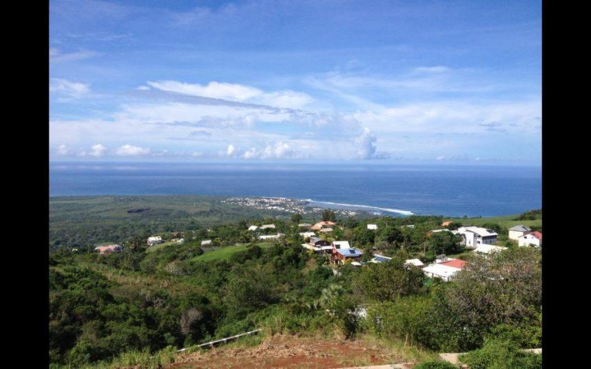Immo sur mesure 1 – Ile de la Réunion